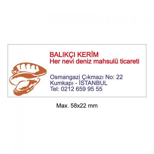 Trodat 4913 P4 Kaşe - 58x22 mm